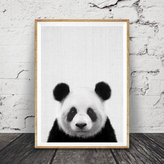 パンダ ☆ アニマル モノクロ アートポスター