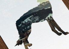 画像2: カリフォルニア大自然 WOLF オオカミ ART ポスター (2)