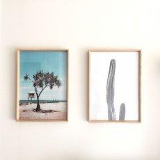 画像2: CALIFORNIA 砂漠 サボテン モノトーン ポスター (2)
