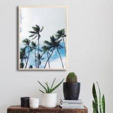 画像2: CALIFORNIA カリフォルニア BLUE SKYパームツリー おしゃれポスター (2)