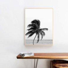 画像2: CALIFORNIA PALM TREE パームツリー  モノトーン ビーチ ポスター (2)