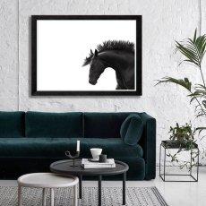 画像2: Manly Horse サラブレット 馬 モノトーン ポスター (2)