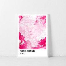 画像1: PANTONE パントーン マーブル Marbre Rose Chaud おしゃれポスター (1)