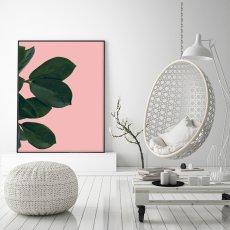 画像2: Botanic Pinkish 観葉植物 ポスター (2)