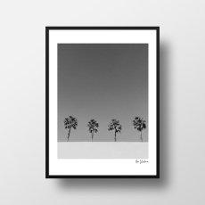 画像1: Beach Life Palm trees  ポスター (モノトーン) (1)