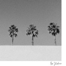 画像2: Beach Life Palm trees  ポスター (モノトーン) (2)