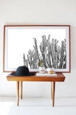 画像2: Lots Cactus サボテン 多肉植物 モノトーン ポスター (2)