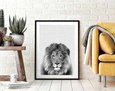 画像2: ライオン ★ アニマル モノトーン アートポスター (2)