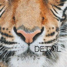 画像3: タイガー ★ TIGER FACE アニマル モノトーン アート 動物おしゃれポスター (3)