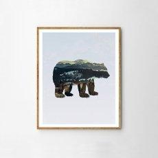 画像1: カリフォルニア大自然 ベアー 熊さん ART ポスター (1)