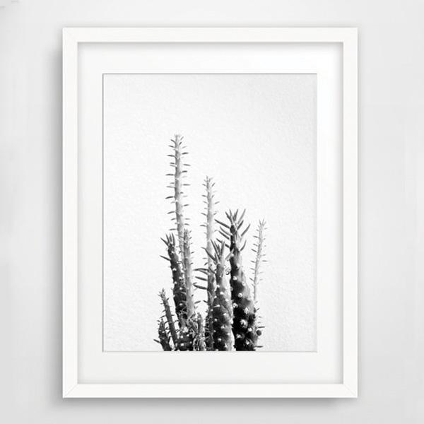 画像1: カリフォルニア California 砂漠 サボテン フォトグラフ ポスター (1)