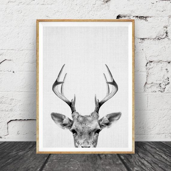画像1: DEER HEAD 子鹿のモノクロ アート 動物ポスター (1)