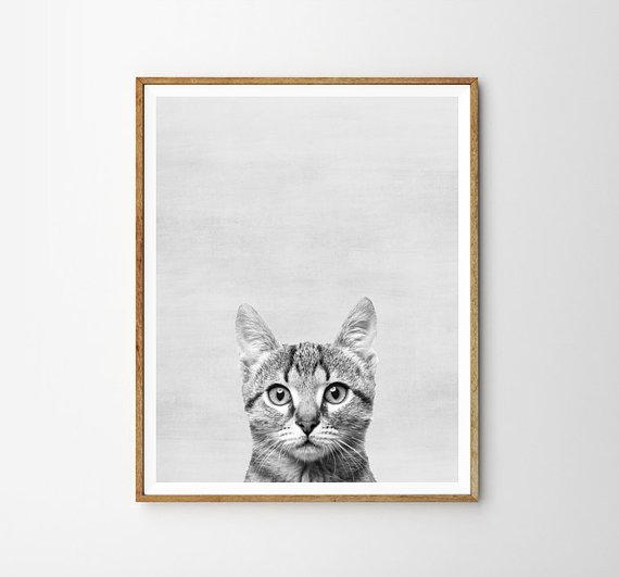 画像1: 子猫 ★ アニマル モノクロ アートポスター (1)