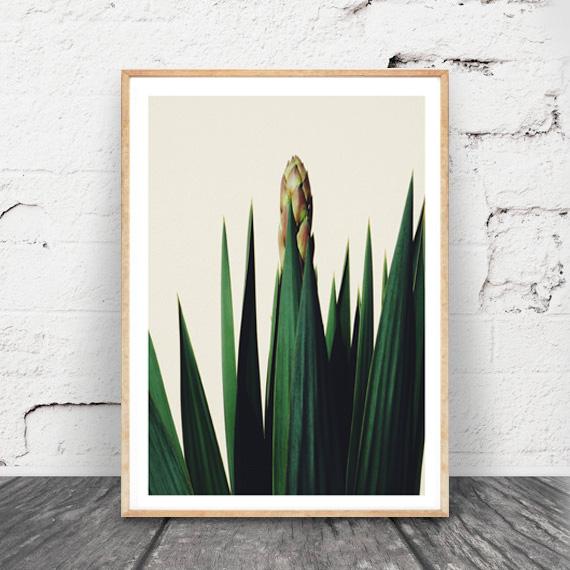 画像1: 西海岸インテリア ★ カリフォルニアガーデン Green Leaf ポスター (1)