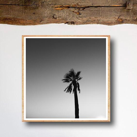 画像1: CALIFORNIA カリフォルニア モノトーン パームツリー ポスター (1)