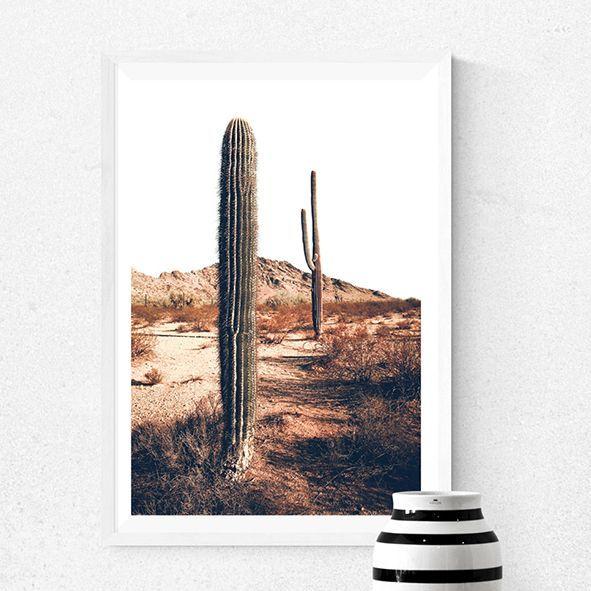 画像1: Arizona Landscape Cactus IN Desert - 砂漠に佇むサアボテン ポスター (1)