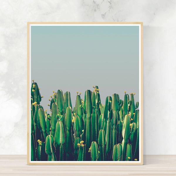 画像1: Cactus & Blue sky - 青空に佇むサボテン おしゃれポスター (1)