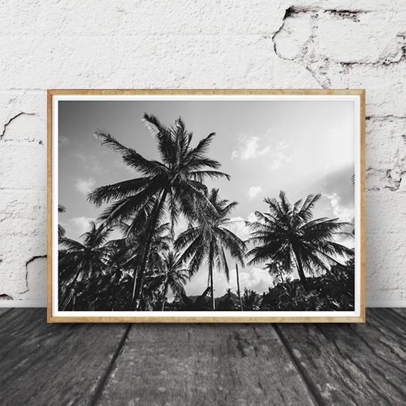 画像1: Palm trees Skyee モノトーン ポスター (1)