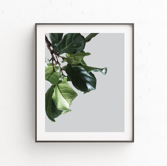 画像1: BOTANICAL ボタニカル GREEN 植物 おしゃれポスター (1)