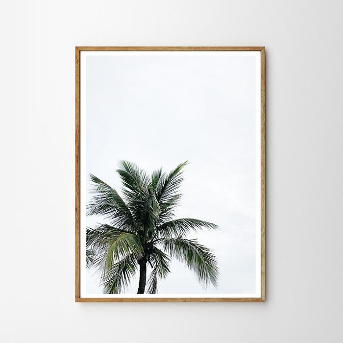 """画像1: West Coast PALM TREE パームツリー """"ONE""""  ポスター (1)"""