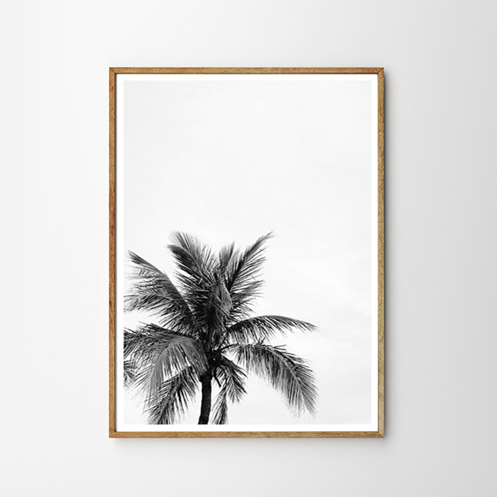 "画像1: West Coast PALM TREE パームツリー ""ONE""  ポスター BLACK & WHITE (1)"