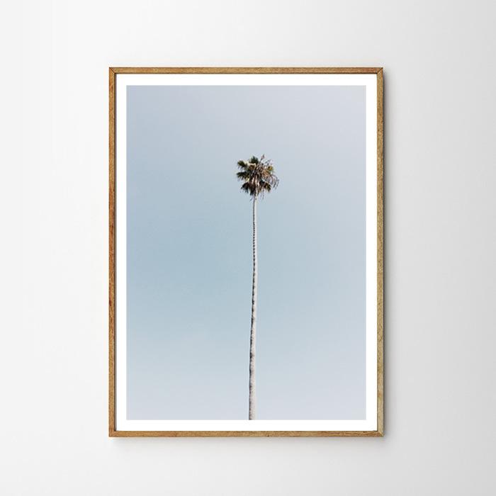 画像1: West Coast Super High PALM TREE パームツリー ポスター (1)