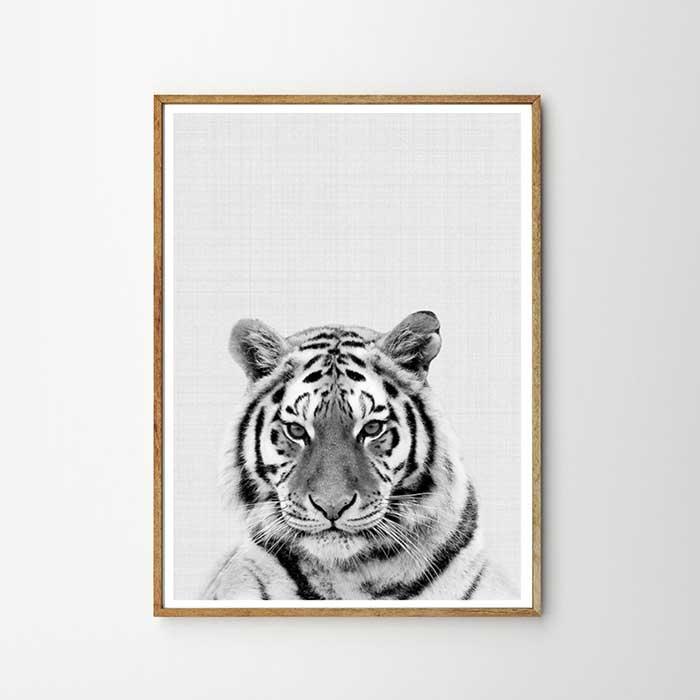 画像1: タイガー ★ アニマル モノトーン アートポスター (1)