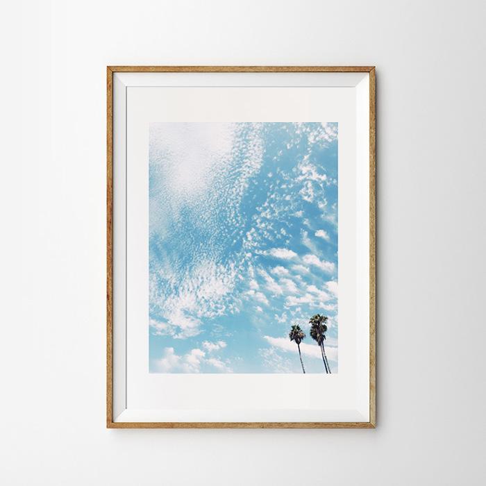 画像1: Fresh Cloud Palm Trees Blue Sky パームツリーポスター (1)