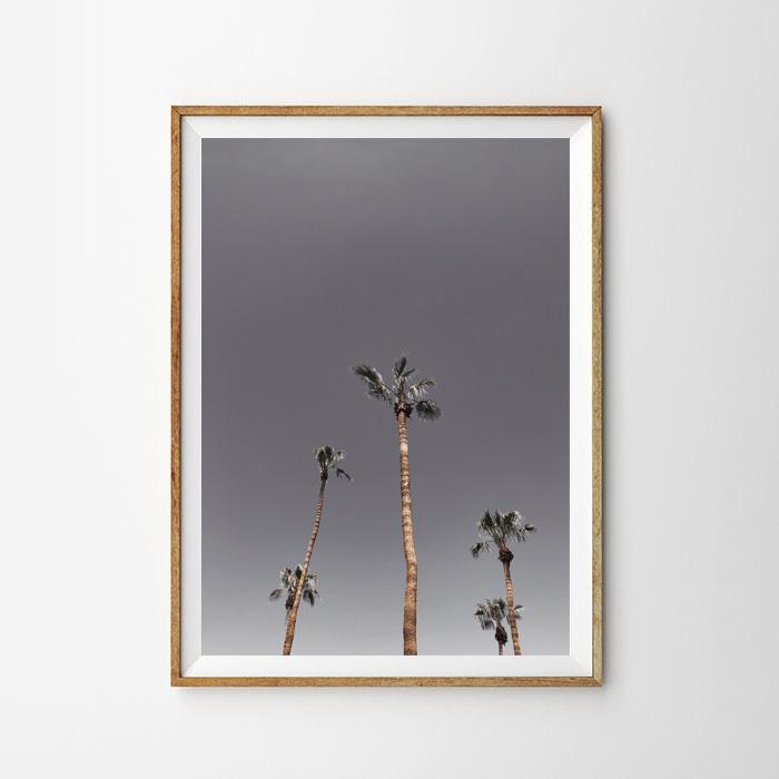 画像1: Palm Trees パームスプリングス ポスター (1)