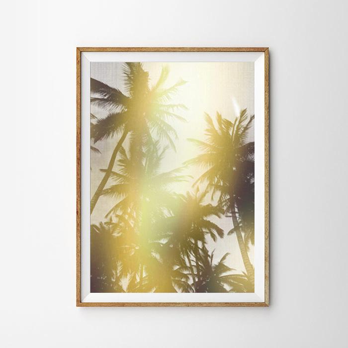 画像1: Sun Shine & Palm Tree ポスター (1)