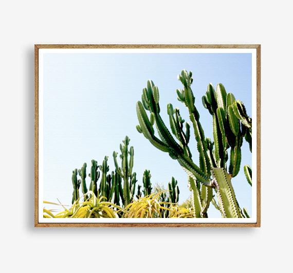 画像1: カリフォルニア 砂漠 サボテン アートポスター (1)