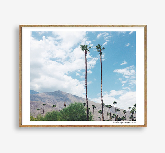 画像1: CALIFORNIA カリフォルニア PALM SPRINGS パームスプリングス 砂漠ポスター (1)