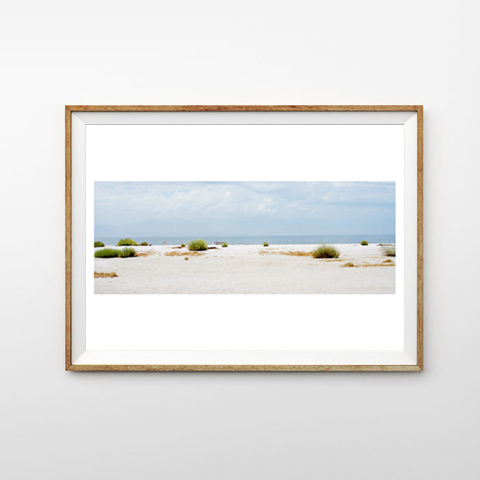 画像1: カリフォルニア Palm Springs パームスプリングス ポスター (1)