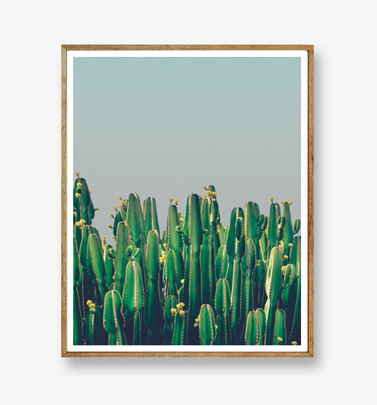 画像1: Cactus & Blue sky -青空に佇むサボテン おしゃれポスター (1)