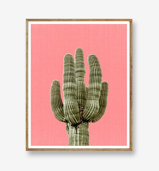 画像1: サボテン Cactus PINK background カリフォルニア アートポスター (1)
