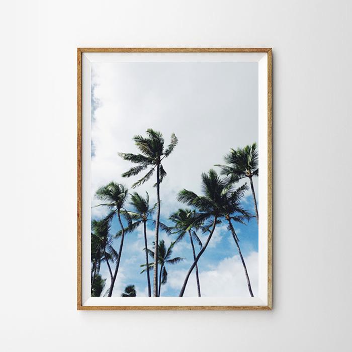画像1: CALIFORNIA カリフォルニア BLUE SKYパームツリー おしゃれポスター (1)