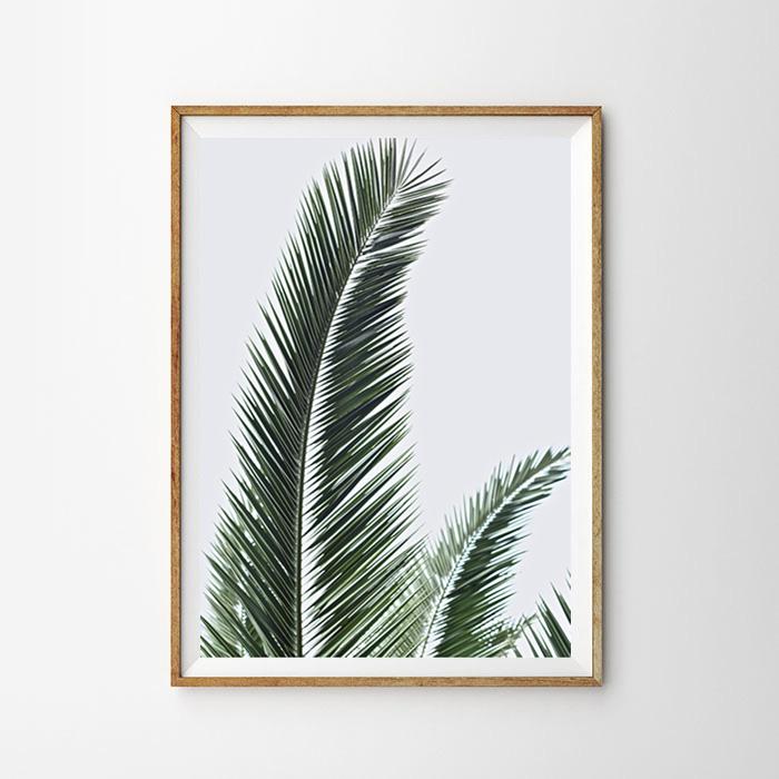 画像1: Leaf + Leaves ポスター (1)