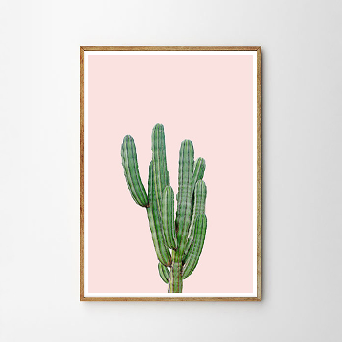 画像1: サボテン Cactus ライトピンク Background アートポスター (1)
