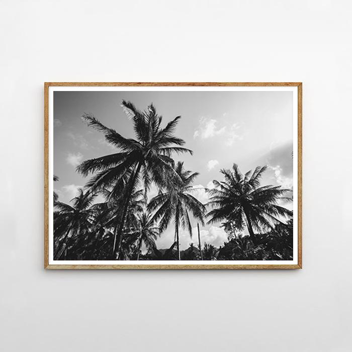画像1: パームツリー SKY モノトーン ポスター(WHITE & BLACK) (1)