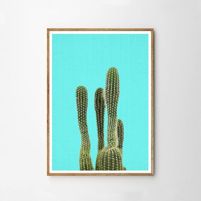 画像1: サボテン Cactus ターコイズブルー background アートポスター (1)