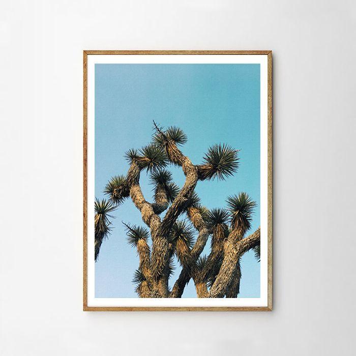 画像1: DESERT BLUE SKY CACTUS サボテン ポスター (1)