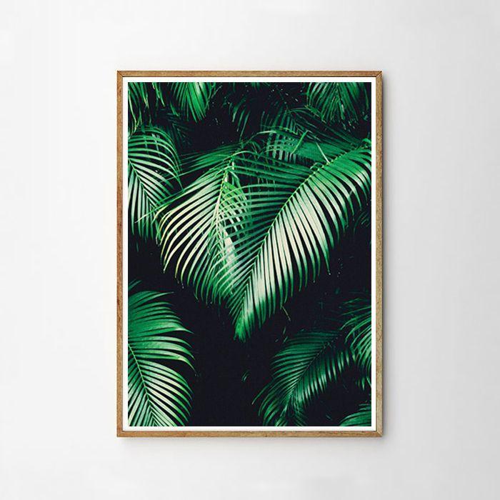 画像1: Tropical Jungle Plants - トロピカル 植物 ポスター (1)