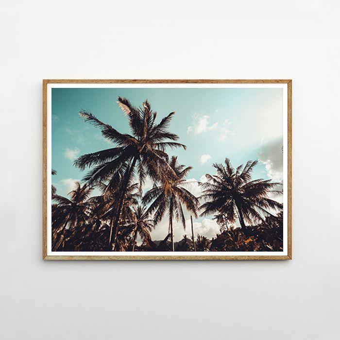 画像1: PALM TREE パームツリー BLUE-SKY  ポスター (1)