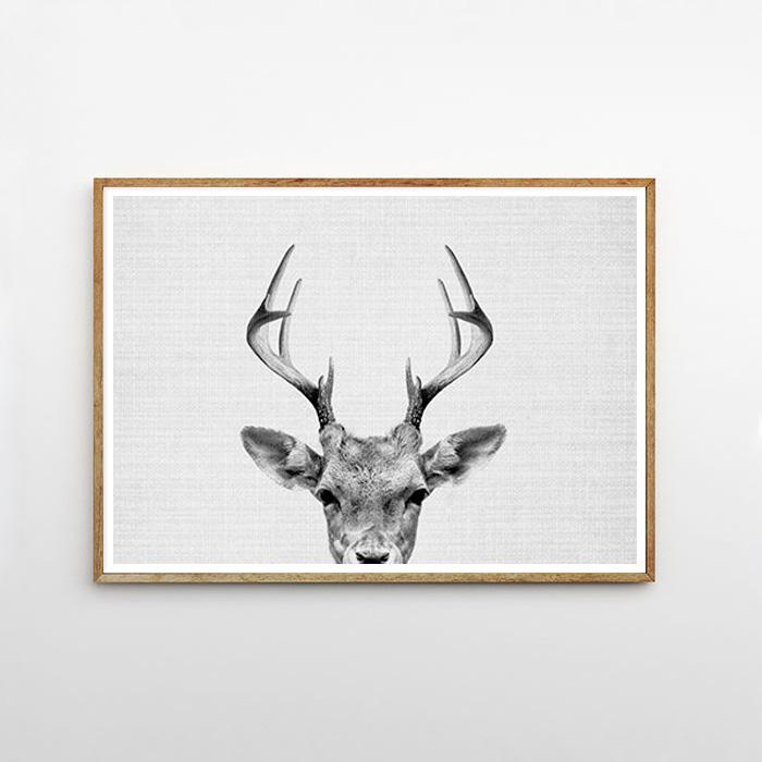 画像1: DEER HEAD 子鹿のモノクロ アートポスター (W) (1)