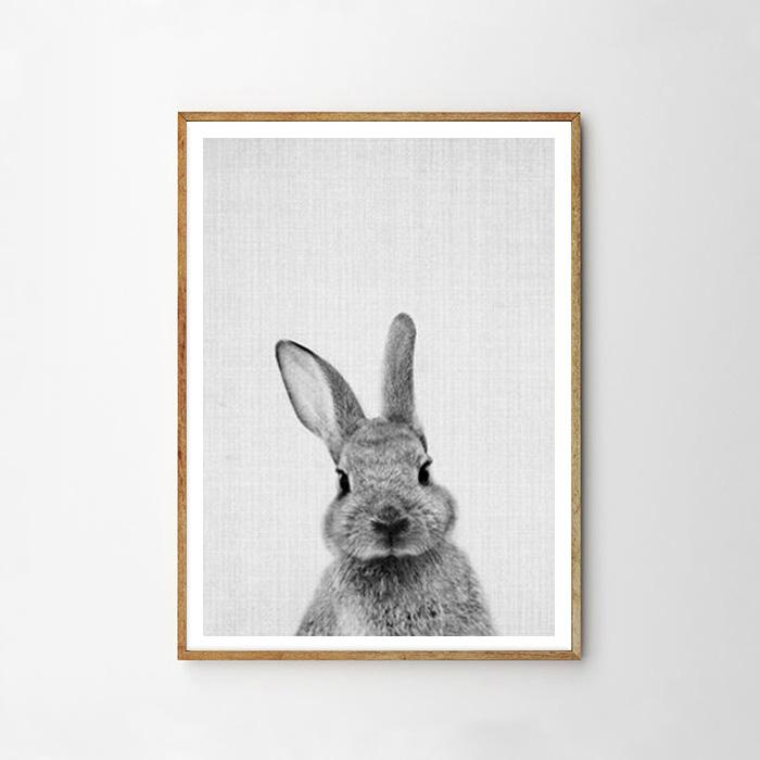 画像1: BUNNY バニー ウサギ★ アニマル モノトーン アートポスター (1)