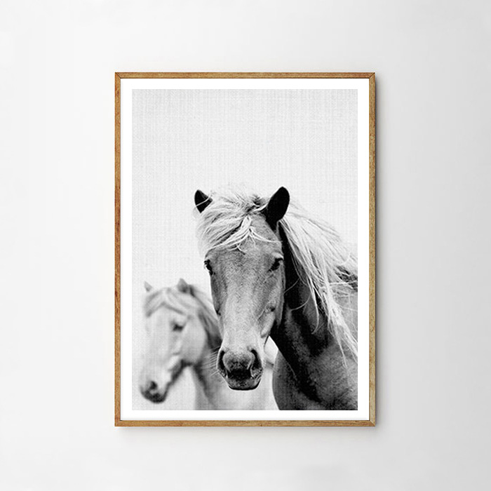 画像1: Horse 馬★ アニマル モノクロ アートポスター (1)