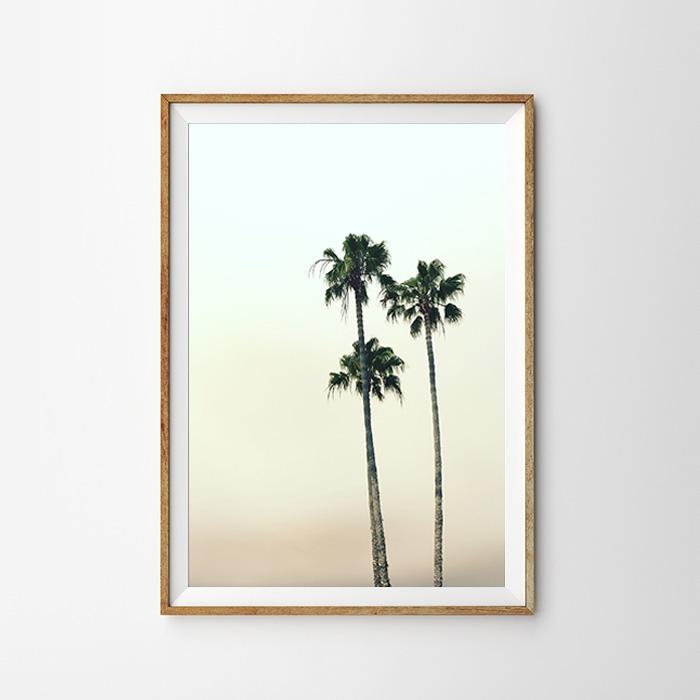 画像1: THREE STANDS PALM TREES ポスター (1)