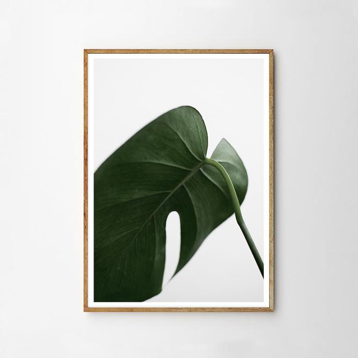 画像1: GREEN PLANS 植物 ポスター (B) (1)