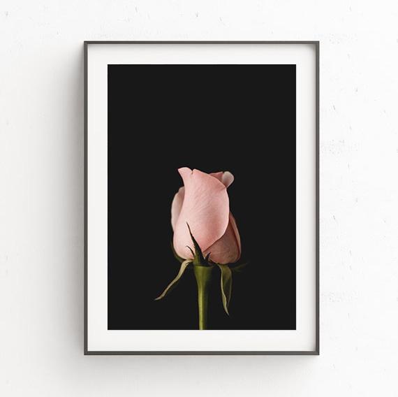 画像1: Black & Rose 薔薇 ポスター (1)