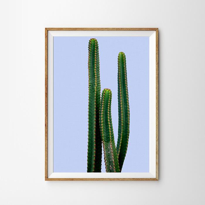 画像1: サボテン Cactus パープルBG ポスター (1)